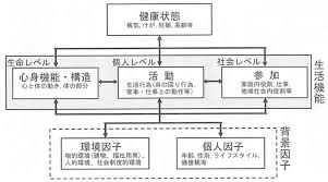 ICF概念図